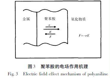 图3  聚苯胺的电场作用机理